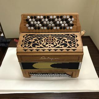 楽器 アコーディオン CASTAGNARI製  イタリアから取り寄せました。(アコーディオン)