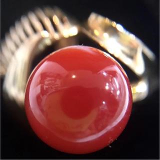 赤珊瑚 K14 リング 11号 18587918(リング(指輪))