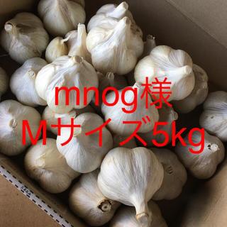 mnog様用 青森にんにく Mサイズ 5kg(野菜)