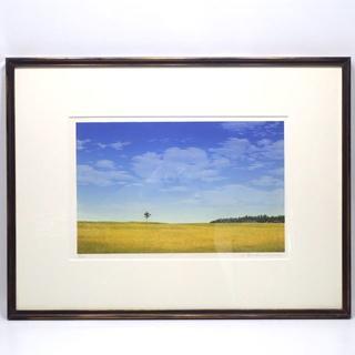 C564 中古 額縁 木製 ガラス 油彩画 水彩画 (絵画額縁)