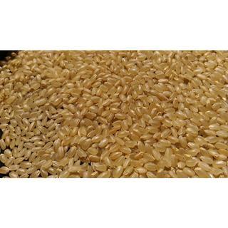 29年度山口県阿東産コシヒカリ玄米2kg【8℃で保冷管理・玄米食や発芽玄米可能(米/穀物)