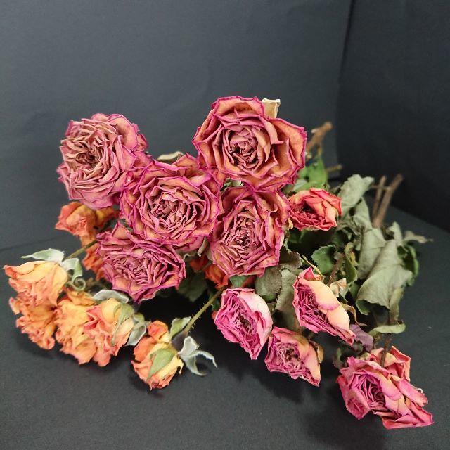 ドライフラワーローズ  レッド系&イエロー 【花材】 ハンドメイドのフラワー/ガーデン(ドライフラワー)の商品写真