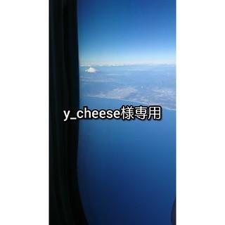 トリンプ(Triumph)のy_cheese様専用(ブラ)