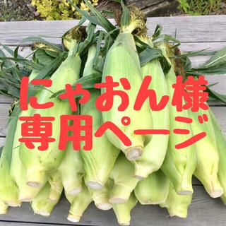 【訳あり・アウトレット・B品】ゴールドラッシュ(M~Lサイズ・18~20本入)(野菜)