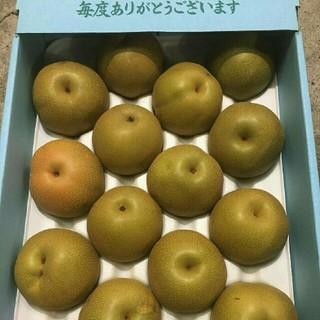 《お待たせ致しました!》果汁たっぷりジューシー!豊水梨 送料無料6(フルーツ)