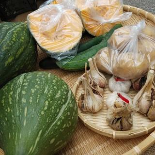 おまかせ無農薬野菜と新米コシヒカリセット(野菜)