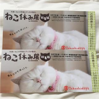 ねこ休み展 2枚 ご招待券 新宿髙島屋(美術館/博物館)