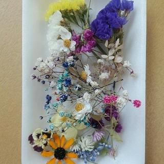 花材 24  大人気のかすみ草増量セット!レジン細工などに最適な小花のセット(ドライフラワー)