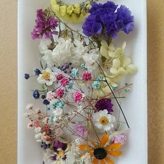 花材 25  人気のかすみ草増量セット!レジン細工などに最適な小花のセット!(ドライフラワー)