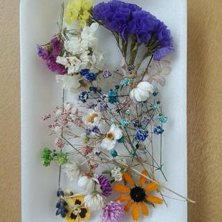 花材26 大人気のかすみ草増量セット!レジン細工などに最適な小花のセット!(ドライフラワー)
