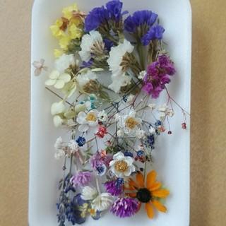 花材27 大人気のかすみ草増量セット!レジン細工などに最適な小花のセット!(ドライフラワー)