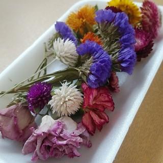 花材28 バラがステキな中花セット!ハーバリウムやアロマワックスにいかが?(ドライフラワー)