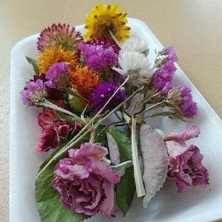 花材29 ステキなバラ入り中花セット!ハーバリウムやアロマワックス作りにいかが?(ドライフラワー)