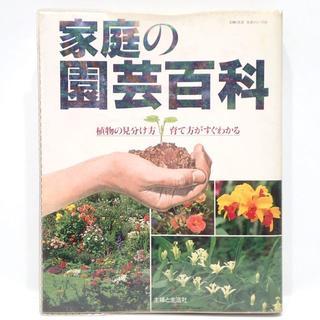 C576 植物の見分け方育て方がすぐわかる 家庭の園芸百科(趣味/スポーツ/実用)