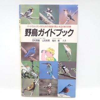 C582 野鳥ガイドブック バードウォッチング(趣味/スポーツ/実用)