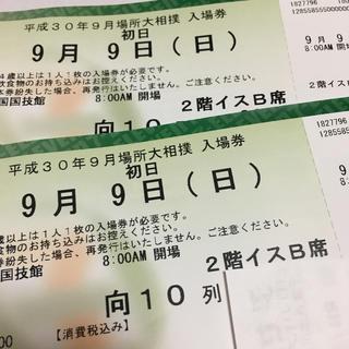 大相撲 九月場所 初日 チケット(相撲/武道)