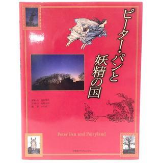 C531 ピーター・パンと妖精の国 アート 参考資料 定価2816円(その他)