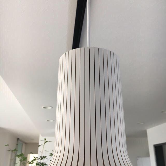 ACTUS(アクタス)のセクトデザイン  sectodesign ランプ 照明 ACTUS アクタス インテリア/住まい/日用品のライト/照明/LED(天井照明)の商品写真