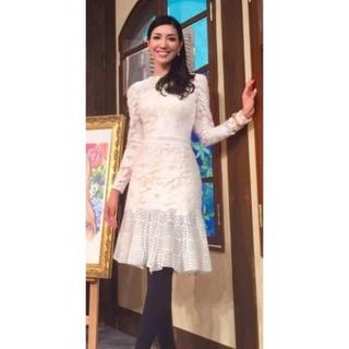 タダシショウジ(TADASHI SHOJI)の新品 大きいサイズ タダシショージ Tadashi Shoji ドレス ホワイト(ひざ丈ワンピース)