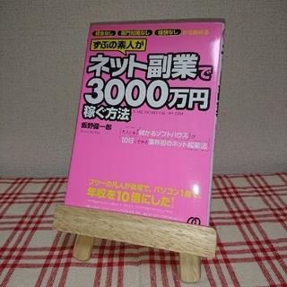 ネット副業で3000万円稼ぐ方法(ビジネス/経済)