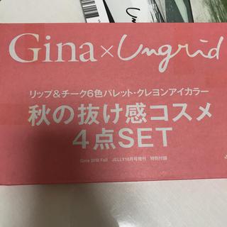 Gina 付録