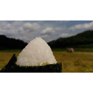 おいしい新米!30年度山口県阿東産コシヒカリ玄米5kg【低GIダイエットに(米/穀物)