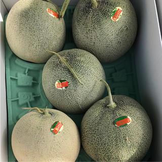北海道産 赤肉メロン 5玉入り  8kg(フルーツ)