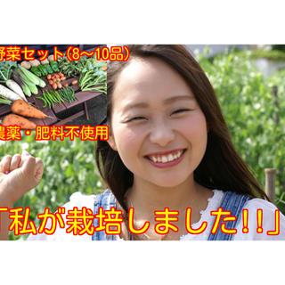 農薬・肥料不使用 野菜セットM8〜10品(野菜)