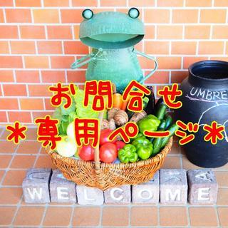 *お問い合わせ専用ページ*(野菜)