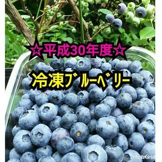 ☆平成30年度 冷凍ブルーベリー☆1,5㌔(フルーツ)