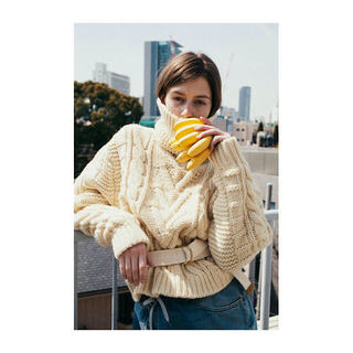 ビューティアンドユースユナイテッドアローズ(BEAUTY&YOUTH UNITED ARROWS)のmaison eureka フィッシャーマン セーター(ニット/セーター)