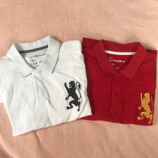 ジャンルーカジョルダーノ(Gianluca Giordano)のポロ ポロシャツ XL(ポロシャツ)