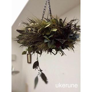 グレビレアと秋色紫陽花 シックでアンティーク フライング リース ドライフラワー(ドライフラワー)