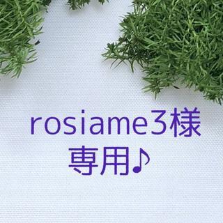 rosiame3様 専用ページです♪(プリザーブドフラワー)