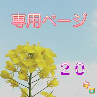 【Gzm様専用】愛媛県産あきたこまち100%   新米20kg   農家直送(米/穀物)