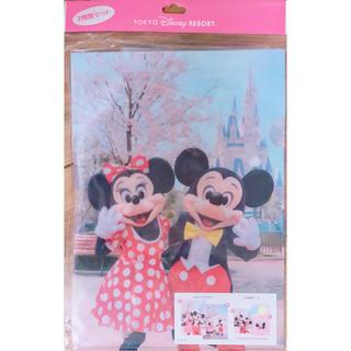 ディズニー(Disney)のディズニー ファイル 公式(クリアファイル)