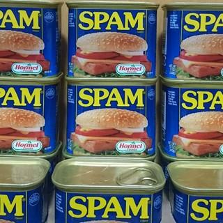 スパムポーク レギュラー 10缶(缶詰/瓶詰)