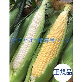 ☆チャコ☆様専用ページ 北海道産とうもろこし(野菜)