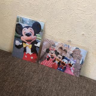 ディズニー(Disney)の新品♡Disney(ディズニー)クリアファイル(クリアファイル)