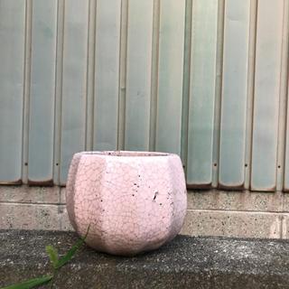 アンソロポロジー(Anthropologie)のフラワーベース 植木鉢(花瓶)