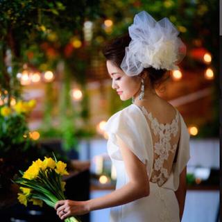 ヴェラウォン(Vera Wang)のウェディングヴェール♡チュール(ウェディングドレス)