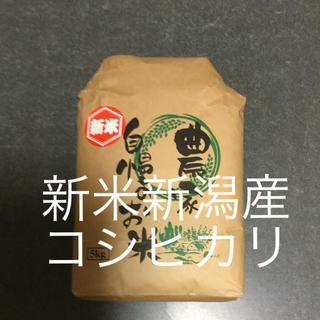 平成30年度産❗️新潟新米コシヒカリ❗️玄米5キロ