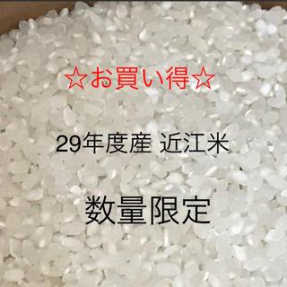 【お買い得】29年度産 キヌヒカリ 近江米 精米 10㎏