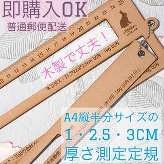 省スペース厚さ測定定規 1、2.5、3cm R18A(その他)