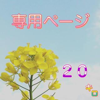 【ゆっち様専用】愛媛県産あきたこまち100%   新米20kg  農家直送(米/穀物)