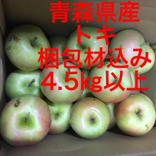 新鮮 りんご トキ 青森県産 送料込み