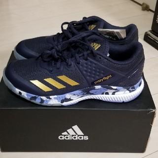 アディダス(adidas)のアディダス 海外バレーボールシューズ(バレーボール)