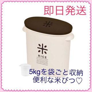 【即日発送】袋のまま保管できる!パール金属米びつ 5kg ☆計量カップ付き