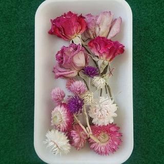 花材31 優しいピンク系ドライフラワー ハーバリウムやアロマワックスに最適!(ドライフラワー)