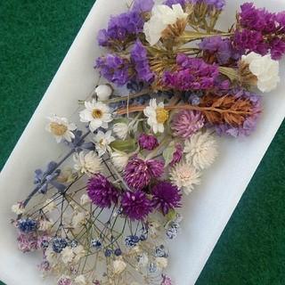 花材32 秋色紫系 レジン封入などに最適な小花のセット(ドライフラワー)